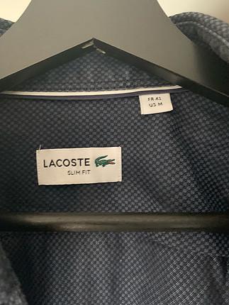 Lacoste Lacoste erkek gömlek
