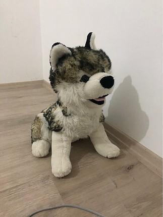 Husky peluş Köpek