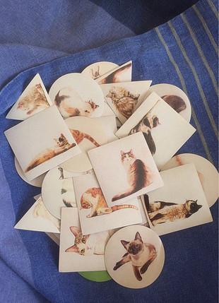 Kedi stickerları