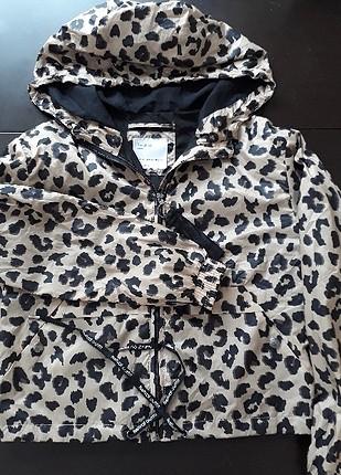 leopar yağmurluk