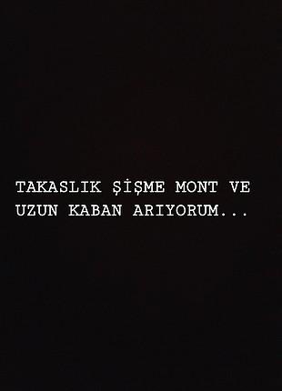 Takas Mont