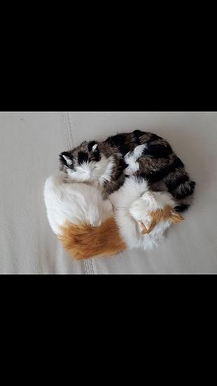 oyuncak kedi