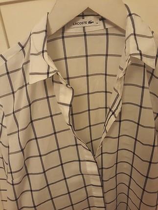 Bayan Lacoste gömlek