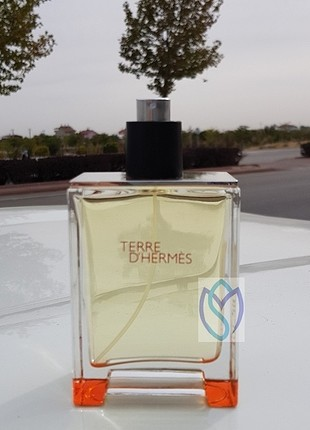 Hermes Terre D Hermes Erkek EDT 100ml