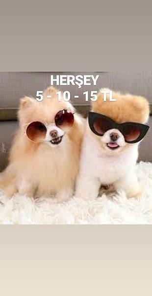 HERSEY 5 - 10 - 15 TL