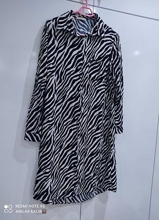 Zebra tunik