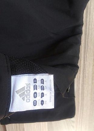 Adidas eşofman pantalon