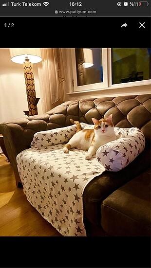 Kedi köpek için koltuk yatak