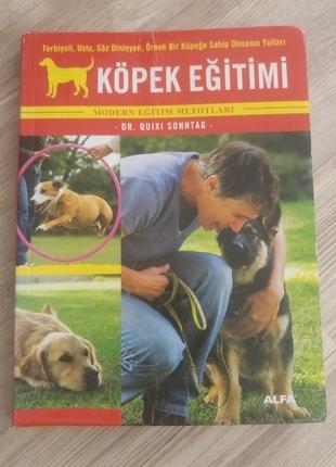 Köpek Eğitimi***
