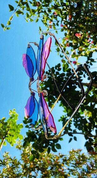 DRAGON FLY PINK BLUE