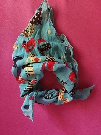 kedili renkli flor