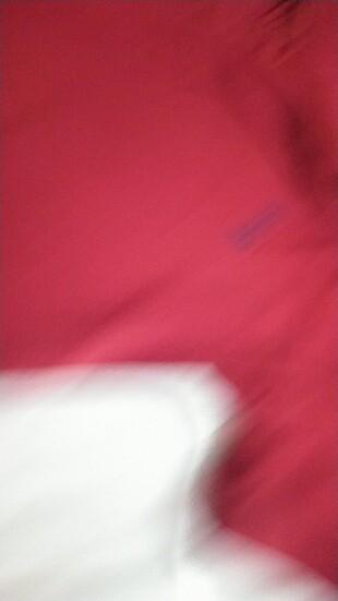 xs Beden bordo Renk Bayan polo tişört