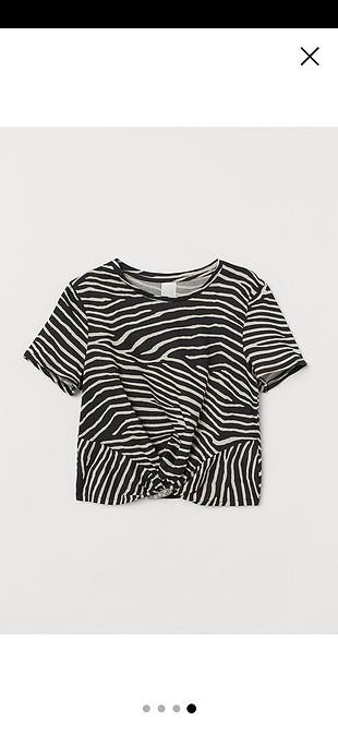 Zebra üst S beden